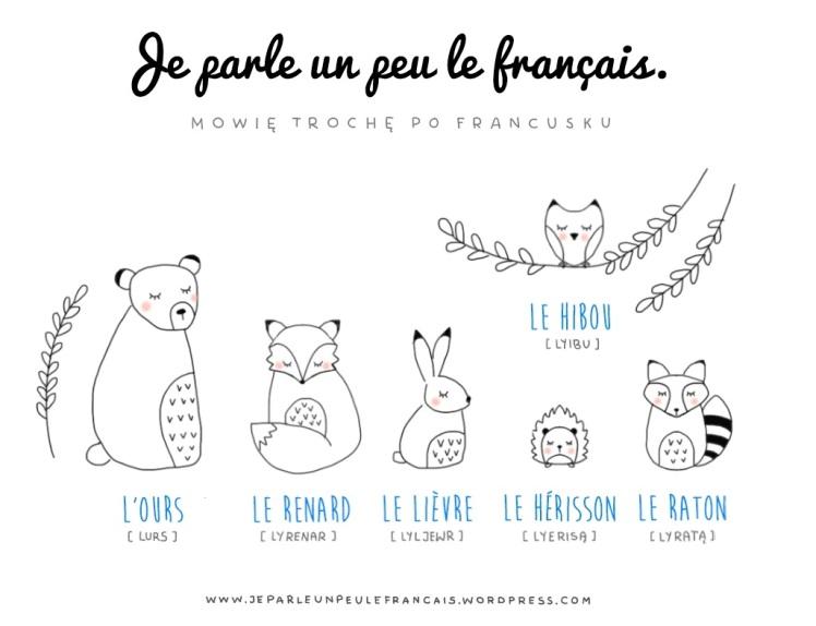 lesne-zwierzaki-jesienne1
