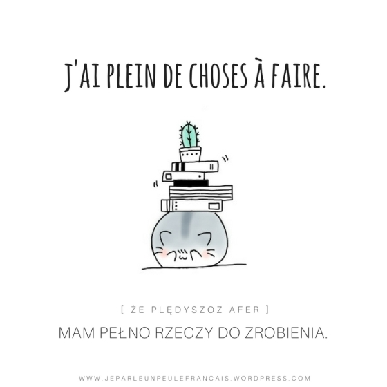 mam-pelno-rzeczy-do-zrobienia-po-francusku-jai-plein-de-choses-a-faire-duzo-na-glowie-ksiazki-kaktus-francuski-nauka