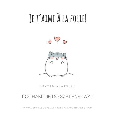 je-taimes-a-la-folie-byc-szalenie-zakochanym-milosc-po-francusku-szalony-w-milosci-nauka-francuskiego-francis-aimer-kochac