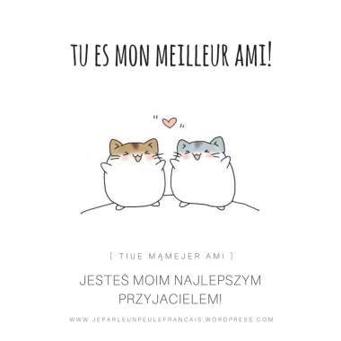 jestes-moim-najlepszym-przyjacielem-tu-es-mon-ma-meilleur-ami-amie-najlepszy-przyjaciel-po-francusku-przyjazn-dzien-przyjaciele-jour-dami