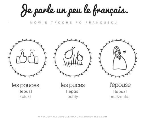 les-puces-les-puces-lepuse-kciuki-pchly-malzonka-pary-wyrazow-trojki-wyrazowe-podobne-slowka-francuski-wymowa