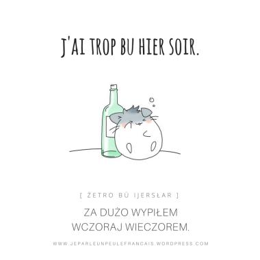 za-duzo-wypilem-wczoraj-wieczorem-jai-trop-bu-hier-soir-francuski-impreza-alkohol-pijany-byc-pijanym-po-francusku