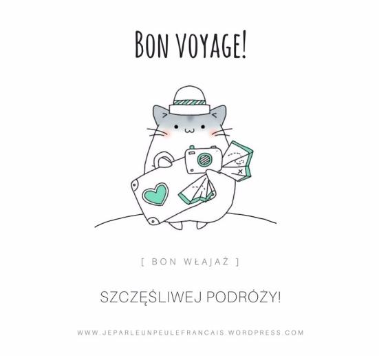 na wakacje francis jpg1 weekend majowy majówka mówię trochę po francusku bon voyage szczęśliwej podróży francis francuski