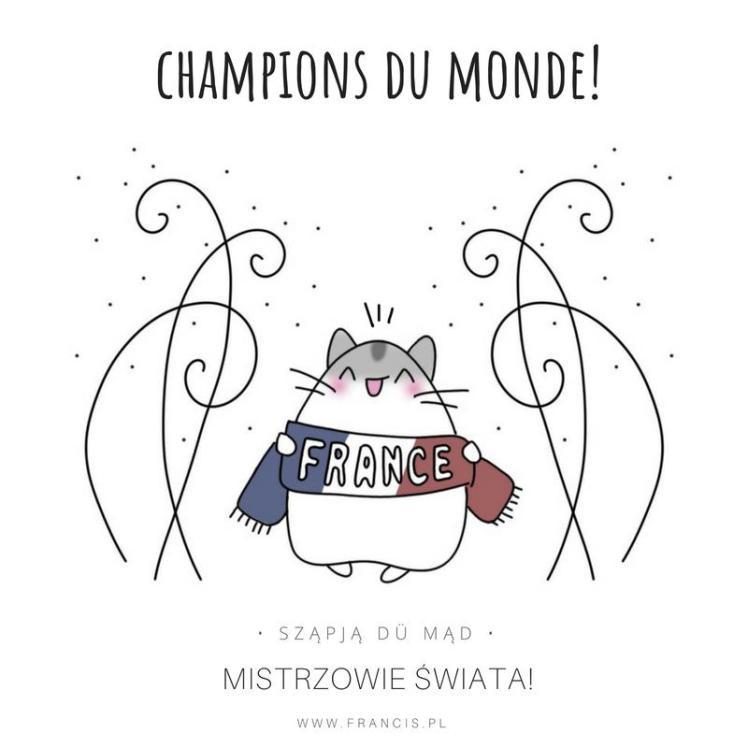 champions du monde francja mistrzem świata 2018 mistrzostwa świata mundial